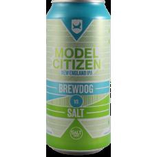 Brewdog vs Salt: Model Citizen