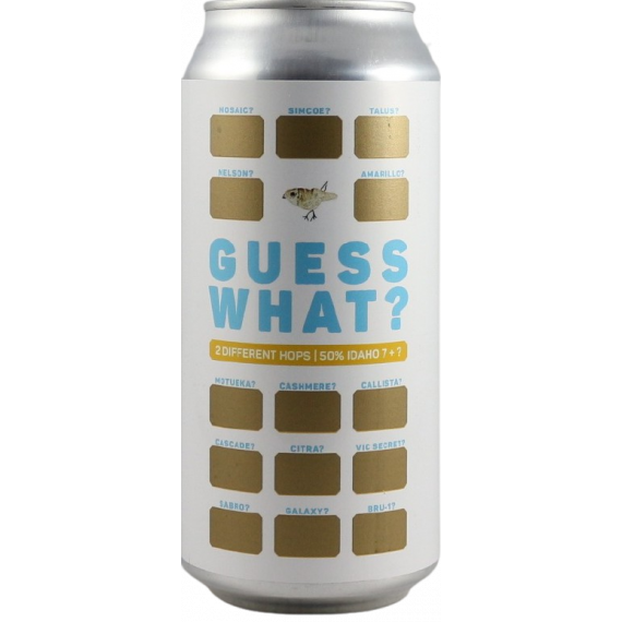 GUESS WHAT? IDAHO 7 + ? | BLUE